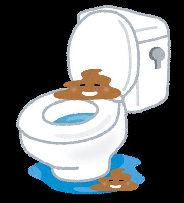 海外生活 変化 変わったこと 台湾 トイレ 汚い